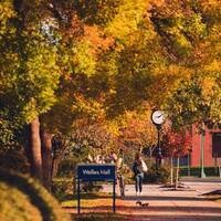 Autumn by Welles Hall