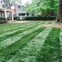 Fall Lawn Care - Tips for Growing the Best Lawn on the Block
