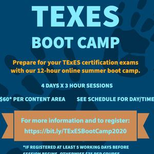 TExES Summer Boot Camp - ESL Supplemental Review