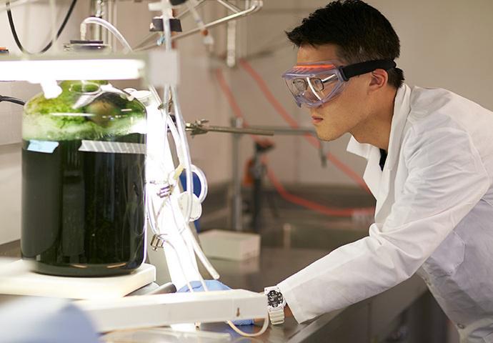 Energy, Environmental & Chemical Engineering