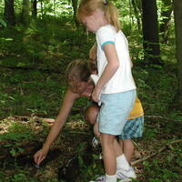 A young girl and an adult in a forest look for insects on the ground.
