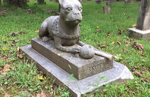 Aspin Hill Pet Cemetery: 100 Years of Pets, People, and the Stories Behind the Stones