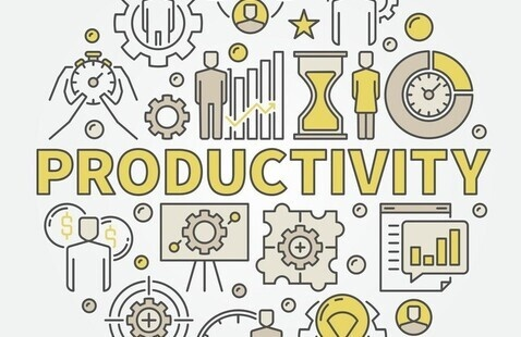 Long Term Effects of Crisis on Productivity