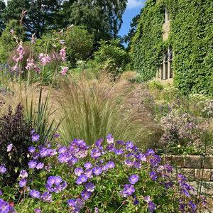 UD Botanic Gardens Presents 'William Robinson's Gravetye Manor Over the Centuries, Through the Seasons'