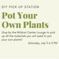 DIY: Pot Your Own Plants