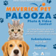 "lue and orange  graphic advertising Maverick Pet Palooza Photo & Video Contest.  Graphic includes an image of a hamster sitting on top of a cat, sitting on top of a dog.  There are also dark blue paw prints through the graphic.    Text reads ""Maverick Pet Palooza Photo & Video Contest. Join fellow Mavericks and show off your pet's outfits, talents, and goofiness for a chance to win a prize.   Submissions: July 1st-8th Voting: July 8th-10th   logos include EXCEL Campus Activities and Student Activities"