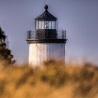 Cape Pogue Lighthouse Tour & Refuge Safari