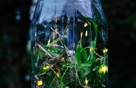 Exploring the Great Indoors: Firefly Jar and Lanterns