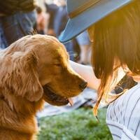 ADA 30th Anniversary: Navigating Legal Protections for Assistance Animals