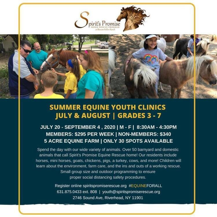 Summer Equine Youth Clinic
