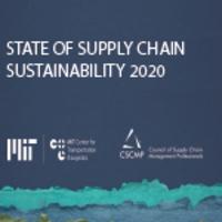Sustainable Report Icon
