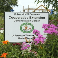 A Day in the Garden - Sussex County Master Gardener Virtual Open House