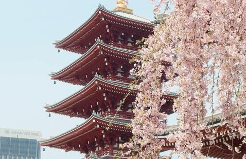 Study Abroad Info Session: Asia