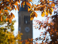 McGraw Tower with fall leaves in foreground