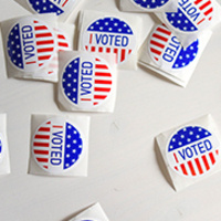 Mini Law School Online: The 2020 Election