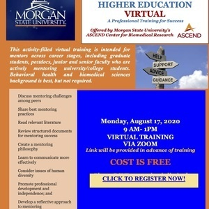 Mentoring In Higher Education Virtual A Professional Training for Success