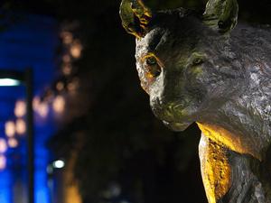 Panther at Bradford campus