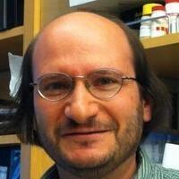 Friday Cancer Center Seminar Series: Michael Bassik, PhD