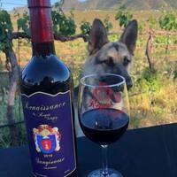 Reyes Winery Cabernet Vertical