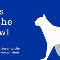 K Week: Cats on the Prowl