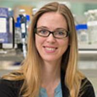 "USC Stem Cell Seminar: Madeline Lancaster, MRC Laboratory of Molecular Biology, Cambridge University—""Understanding development of brain structure and function using human brain organoids"""