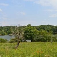 DARCEE's Friends of Keystone State Park Parks for Pollinators BioBlitz
