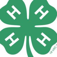Hamilton County 4-H Home School Club Meeting (virtual)