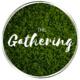 The Gathering - Week 3