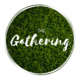 The Gathering - Week 10