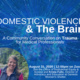Domestic Violence and the Brain: a Community Conversation on Trauma for the Medical Professional