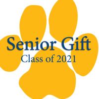 Senior Gift Committee Info Session