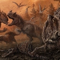 The Silence of the Allosaurs: Cannibalism Among Late Jurassic Dinosaurs