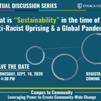 """What is """"Sustainability"""" in the Time of Anti-Racist Uprising & a Global Pandemic?"""
