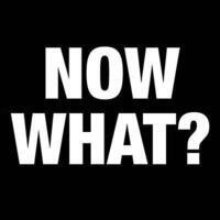 Now What? Virtual Advice & Answers from Experts About Your Idea of Startup