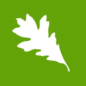 Sustainability BINGO kickoff
