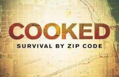 Sustainability Film Series | COOKED: Survival By Zip Code Panel Discussion