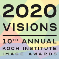 2020 Visions: Lunch & Learn Lightning Talks