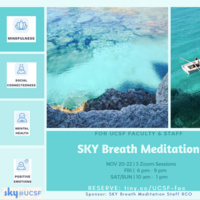 SKY Breath Meditation - Campus Retreat for Resilience