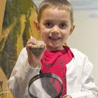 Virtual Little Wonders: Fascinating Fossils
