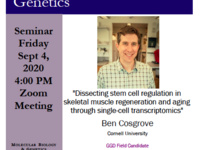 """MBG Friday Seminar: """"Dissecting stem cell regulation in skeletal muscle regeneration and aging through single-cell transcriptomics"""""""