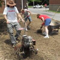 Sustainability Roundtable: Soil Contaminants in a Louisville Urban Community Garden