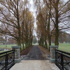 Willow path bridge