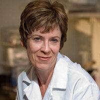 Moving Targets Seminar Series: Dr. Paula Cannon, USC