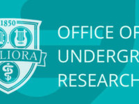 Undergraduate Research Info Session