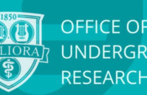 Undergraduate Research Info Session