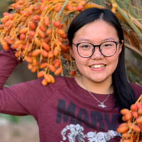 Chinese Mentoring with Amy Shiying Wang