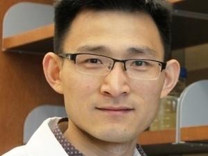 Seminar: Guang Li, PhD