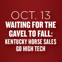 Waiting for the Gavel to Fall: Kentucky Horse Sales go High Tech