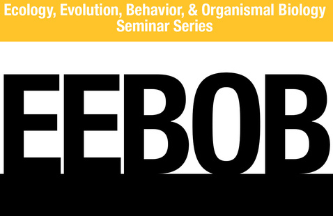 Virtual: Ecology, Evolution, Behavior, & Organismal Biology (EEBOB) seminar series