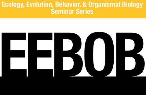 Virtual: Ecology, Evolution, Behavior, & Organismal Biology (EEBOB) seminar series